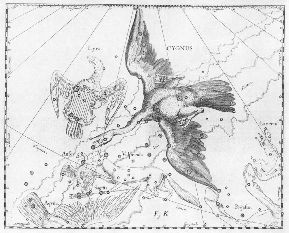 foto Cielo d'estate: i pianeti e il Triangolo Estivo