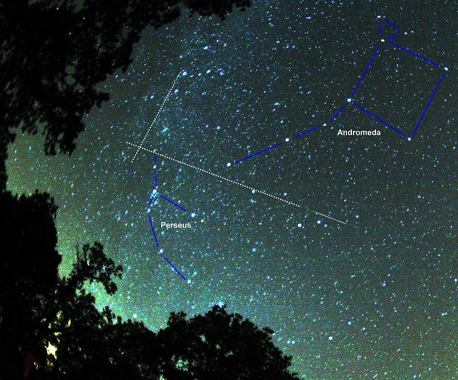 foto Col naso all\'insù, osservazione delle stelle cadenti